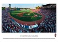 Picture: South Carolina Gamecocks baseball Carolina Stadium Panoramic poster/print.