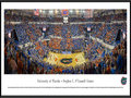 Picture: Florida Gators Stephen C.O'Connell Center basketball panoramic print professionally framed. This panorama, taken by James Blakeway, captures the Florida Gators men�s basketball team in a win over the Tennessee Volunteers at the Stephen C. O�Connell Center, more commonly referred to as the O�Dome. Florida�s student section, dubbed the �Rowdy Reptiles,� has made the O�Dome one of the toughest places to play in the nation. As the game wrapped-up, the sixth-ranked Gators had a March-like gleam in their eyes and held the Volunteers to a season-low in points and shooting percentage. The University of Florida is a top ranked public national university, located on a 2,000 acre campus in Gainesville, Florida.