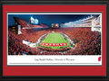 "Picture: Wisconsin Badgers Camp Randall Stadium 13 X 40 panoramic print professionally double matted in team colors and framed to 18 X 44. This panoramic photograph of the University of Wisconsin Badgers football team playing on their home field at Camp Randall Stadium was taken by Nathan Haler. The first Badger football team took the field in 1889 and upon formation of the Big Ten conference in 1896, they became the first-ever conference champion. The team's nickname originates in Wisconsin's early history, when miners came to the state looking for minerals, but without shelter in the winter they had to ""live like badgers"" in tunnels burrowed into hillsides. As a result, the territory was dubbed the ""Badger State,"" from which the team took its name. The Badgers' success includes numerous conference championships and Rose Bowl victories."