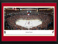 Picture: This 13.5 X 40 panorama has been professionally double matted in Arizona Coyotes team colors and framed to 18 X 44. It captures the Arizona Coyotes playing to a sold out crowd of more than 17,125 fans on their home ice at Gila River Arena in Glendale, Arizona. In 1996, the club moved to the Valley and established themselves as the Phoenix Coyotes. In December 2003, the Coyotes moved from downtown Phoenix to their newly completed arena in Glendale and also updated their National Hockey League logo and uniforms. In 2012, the Coyotes won the Pacific Division and reached the Western Conference Final for the first time in franchise history.