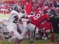 Picture: AJ Green Georgia Bulldogs 12 X 18 panoramic print.